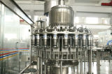 Warmeinfüllen-Fruchtsaft-Flaschen-Füllmaschine-Produktionszweig