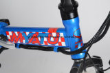 vélo pliable de 250W E avec la batterie au lithium de 36V 10.4ah