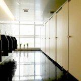 좋은 디자인 회색 색깔 콤팩트 합판 제품 화장실 칸막이실
