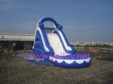Trasparenza di acqua gonfiabile del PVC della tela incatramata dei bambini gonfiabili del delfino con il raggruppamento