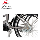 250W Central Brushless Motor 36V Bateria de lítio Folding Electric Bikes