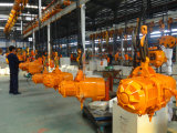 Double élévateur à chaînes électrique de la vitesse 500kgs