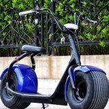 Motocicleta caliente de la venta, rueda motriz eléctrica 800W Citycoco del neumático gordo