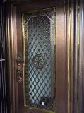 Nuovo portello dell'acciaio inossidabile di colore di disegno per la villa o l'appartamento (S-3035)