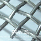 Los discos tamiz de acero inoxidable de malla de alambre / tela de alambre / malla de alambre de