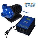 Aplicação de Submerisible e bomba de água elétrica padrão da piscina