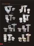 319 Washdown Ceramisch Toilet Uit één stuk, Populair in Maleisië, India, Pakistan