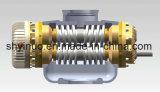 Schrauben-Pumpe für Flüssigkeit (2W. W)