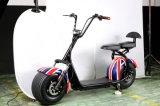 電気手段2の車輪の電気スクーターのHalleyのスクーター
