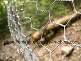 Cerca del ganado del acoplamiento de alambre de acero de Sailin