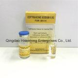 Sodio di Ceftriaxone di alta qualità per l'iniezione 0.5g