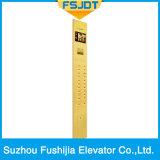 Elevador da casa de campo de Fushijia com a decoração do aço inoxidável da linha fina