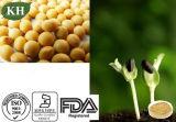 콩 추출 간장 Isoflavones 20%-80% (HPLC)