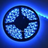 300 tira azul del LED SMD5050 LED