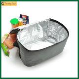 Sacchetti isolati esterni del dispositivo di raffreddamento del pranzo di picnic di Eco (TP-CB379)