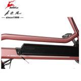 250W 36V 후방 무브러시 모터 분홍색 전기 기동성 스쿠터 (JSL038G)