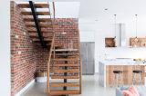 Escalera moderna modificada para requisitos particulares interior y exterior