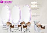 شعبيّة [هيغقوليتي] صالون أثاث لازم مرآة حلّاق صالون كرسي تثبيت ([ب2032])