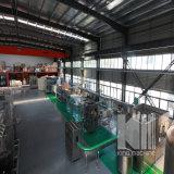 Automatische Plastic het Vullen van het Bronwater van de Fles Machine