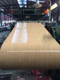 Hoja de la alta calidad PPGI en bobina/bobina pintada color con el grano de madera