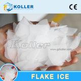 Générateur de glace économiseur d'énergie d'éclaille de Koller pour l'industrie de pêche de la grande capacité (50 tonnes/jour)