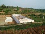 Edificio agrícola prefabricado de la estructura de acero para la vertiente de las aves de corral