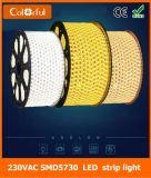 Alto indicatore luminoso di striscia flessibile esterno di luminosità AC230V SMD5730 LED