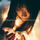 8m Decor van de Tuin van Kerstmis van het Huwelijk van de Partij van de Fee van het 60 LEIDENE Koord van de ZonneMacht het Lichte Openlucht