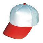 Chapeau de 5 panneaux (FC010)