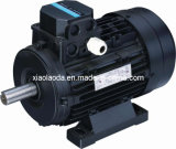 Trois Phase Motor (YS6312 - YS90L-4)