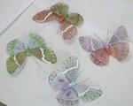 Decorações da borboleta (T06161)