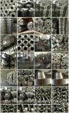 Acier inoxydable 304, 304L, 316, 316L, bride d'acier du carbone