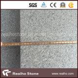 Dark Grey Impala Black G654 Granite Tiles pour plancher / Mur / Extérieur
