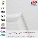 White HDF Interior Molded Flush Primer Door Skin