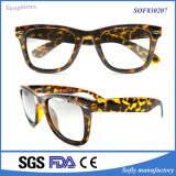 Occhiali da sole di plastica unisex variopinti personalizzati di modo di marchio
