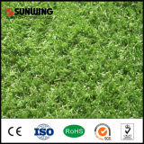 Hierba de alfombra artificial de interior al por mayor del SGS de China para el jardín