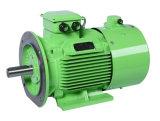優れた効率を使用して耐久財3段階の電動機380V 150Hz