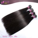 Haar-Fabrik-Großhandelspreis-reales brasilianisches Haar