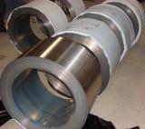 409 bobines/courroie/bande d'acier inoxydable fabriquée en Chine