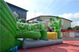 Carcassa Dry Slide di Design Inflatable Green The dei 2015 Special da vendere