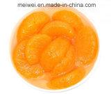 Comércio por grosso de mandarim em lata da China