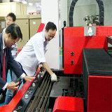 La machine de découpage de laser de fibre d'acier inoxydable d'acier du carbone