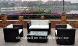 Мебель сада напольного ротанга/Wicker софы установленная