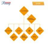 Cadre électronique de qualité, cadre de clé de verrouillage de Digitals