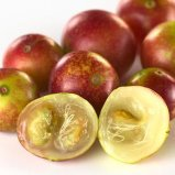 Camu Fruit Extract 10%-25%Vitamin c