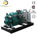 OEM faisant à 200kw le générateur diesel silencieux à vendre 250kVA avec Cummins Engine