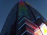 Indicatore luminoso decorativo di paesaggio del tubo del LED (L-249-S48-RGB-1M-DMX)