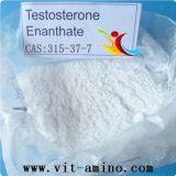 Enan pharmazeutische Grad-Testosteron Enanthate Steroide USP 98% prüfen