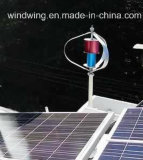 Viento Sistema Híbrido Solar (turbina de viento 300W)