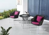 Insieme di caffè popolare del giardino del patio di disegno di Gentel da Chair & dal tavolino da salotto (YT940-1)